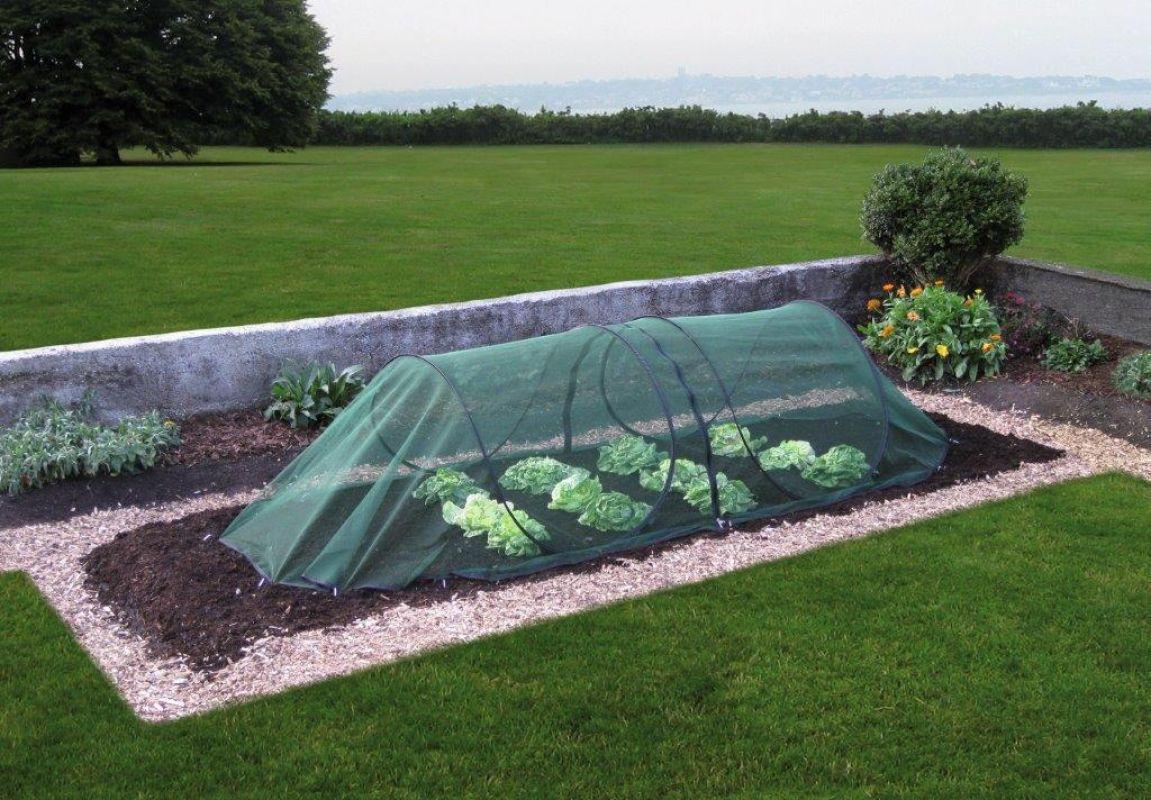 Gardenguard Frühbeet Universalschutz Pflanzenschutztunnel