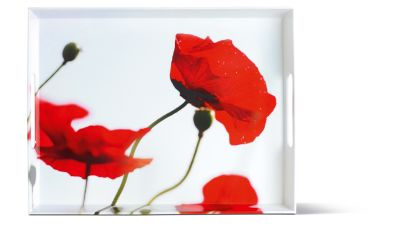 Emsa CLASSIC Tablett, Corn poppies, 50 x 37 cm