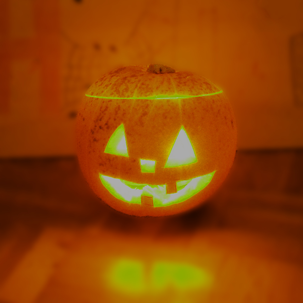 Gruselige halloween deko f r den garten hammerkauf ratgeber blog - Halloween deko garten ...