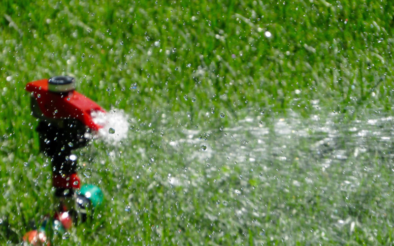 Wann Und Wie Soll Man Seinen Rasen Bewässern Hammerkauf Blog