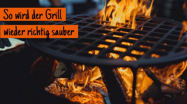 Gas Oder Holzkohlegrill Reinigen : So wird der grill wieder richtig sauber hammerkauf blog